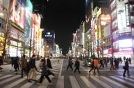 Akihabara crosswalk...